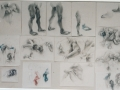 """,,Studies of body"""""""